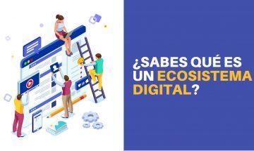 ¿Qué es un ecosistema digital y cómo puede impulsar tu negocio?